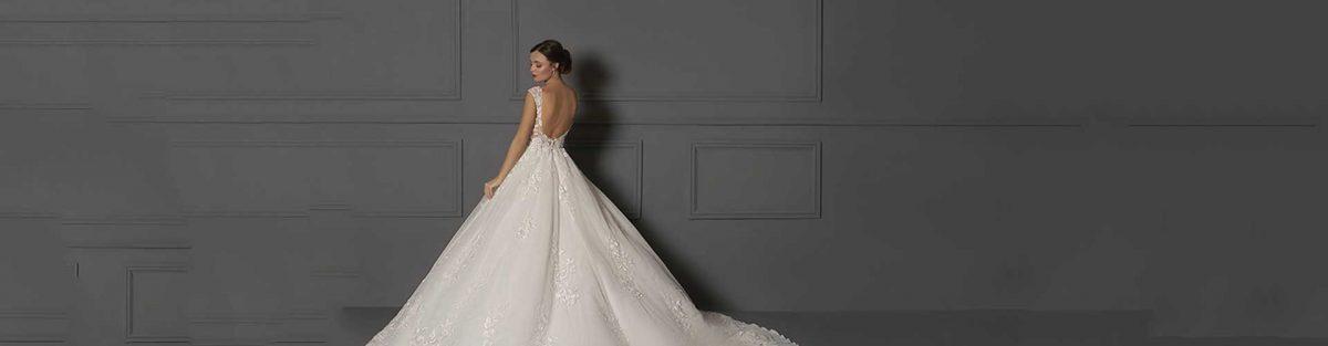Bridal gowns phoenix | Wedding (Gilbert, Chandler, Mesa, Scottsdale) | Danielle